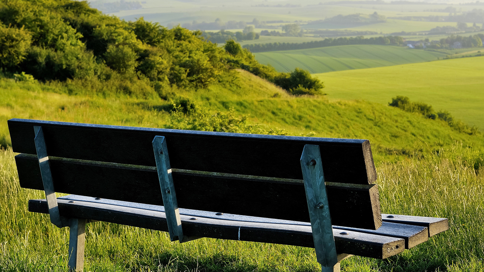 Looking across the view at Dunstable Downs