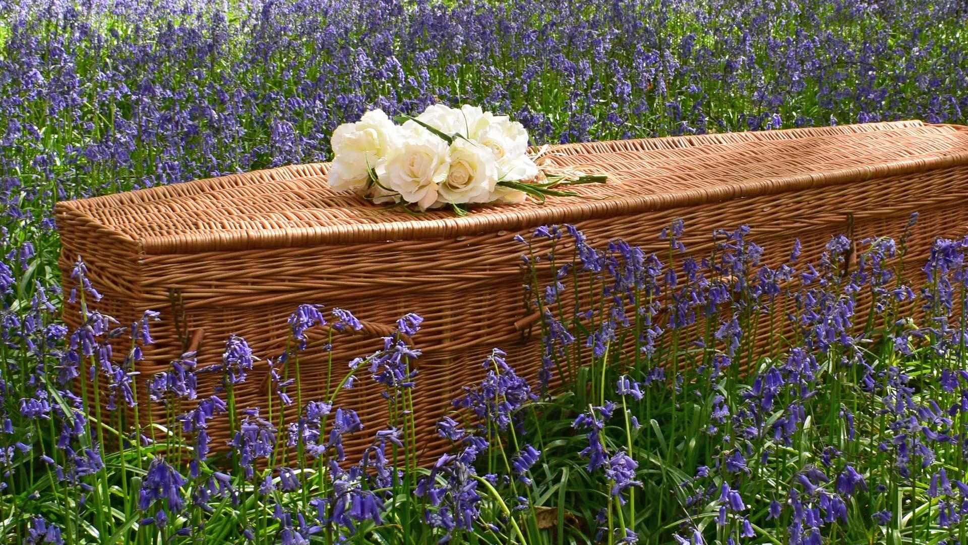 bio degradable coffin