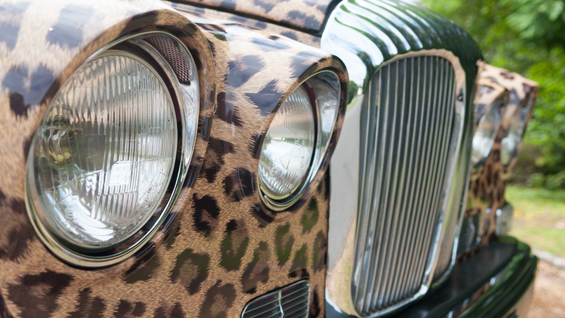 leopard print hearse